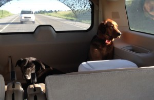 Jake and Maya going to the lake in the SUV