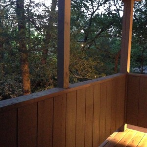 View from My Apartment Deck